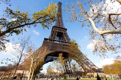 Vista general de la Torre Eiffel entre árboles desde el campo de Marte, París, Francia