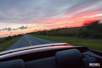 Parte trasera de un Ford Mustang mientras se ve el atardecer en Everglades, Florida, EEUU