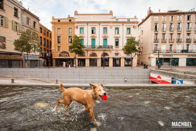 Recorrido por la ciudad de Perpignan, al sur de Francia