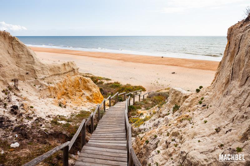 Parque Natural de Doñana