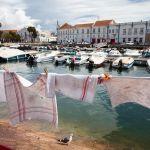 Trapos tendidos en una barandilla del puerto de Faro con una gaviota revoloteando