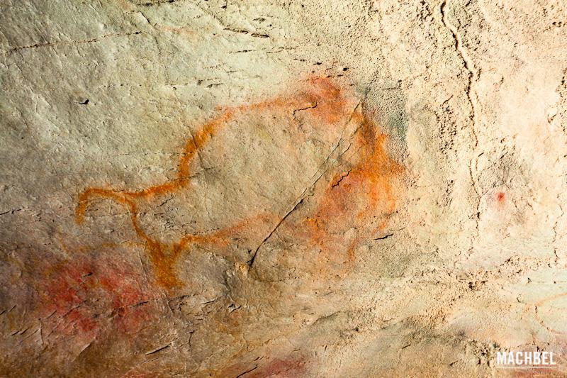 Cueva el Castillo con pinturas rupestres. Cantabria, España