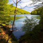 Embalses y bosque de Leurtza. Naturaleza en Navarra