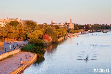 Paseo por Sevilla al atardecer, vista del río Guadalquivir. Andalucía España