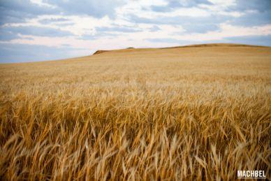 Provincia de Albacete lugares para visitar Castilla la Mancha by machbel