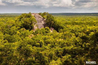 Antigua ciudad maya de Calakmul, Campeche, Mexico by machbel