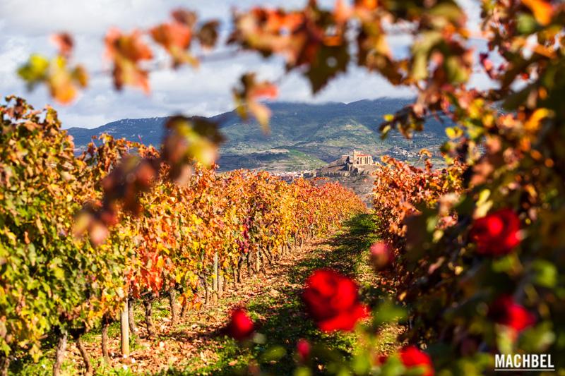 La Rioja y el vino, conociendo su cultura con los paisajes