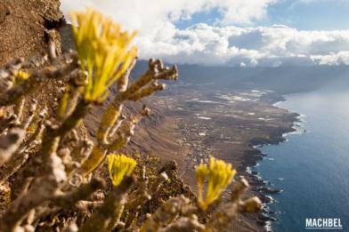 Paisaje de la Isla de El HIerro, Islas Canarias España by machbel