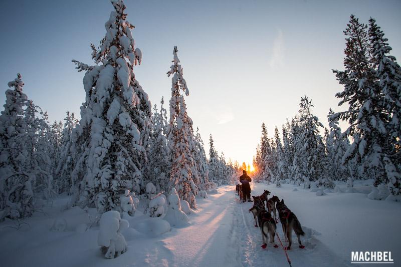 Machbel Travesía con Huskies por Laponia Finlandia, Blog de viaje