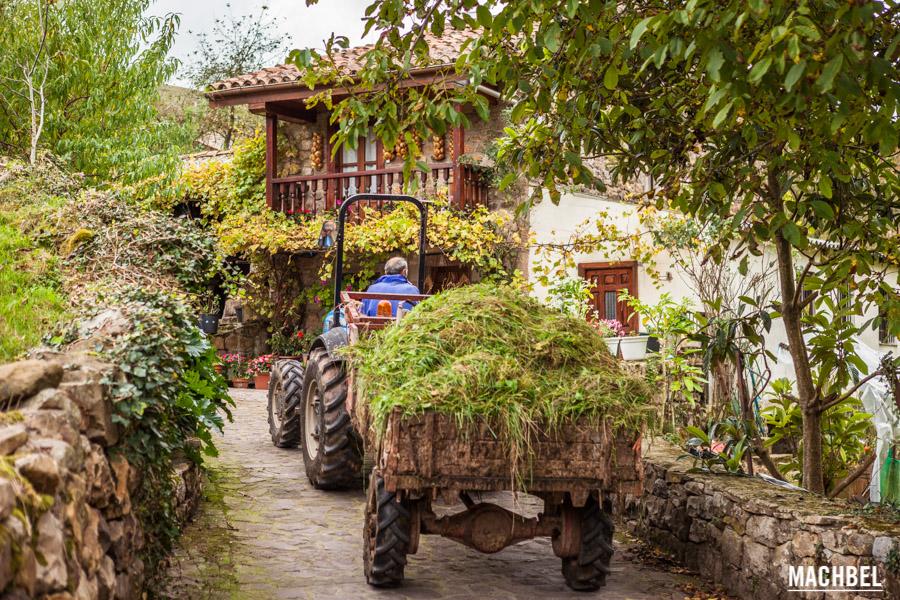 Tractor por Carmona