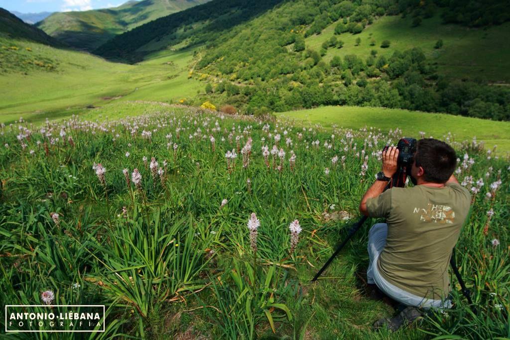 21 lugares recomendados por fotógrafos para visitar en primavera
