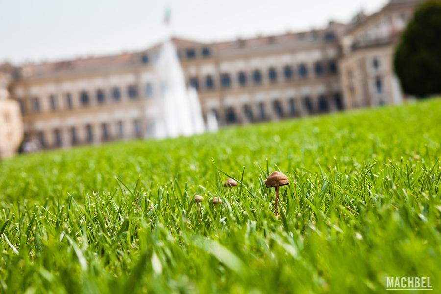 Jardín de la Villa Real de Monza