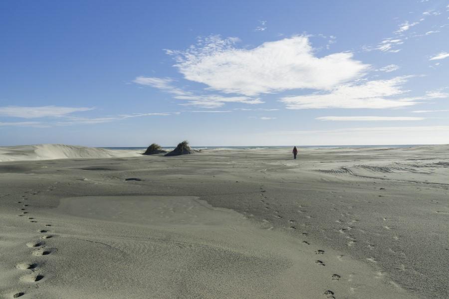 Playa de Farewell Spit