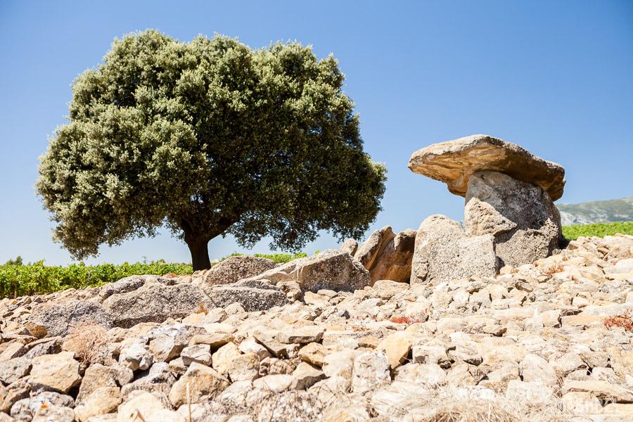 Túmulos funerarios en la Rioja Alavesa