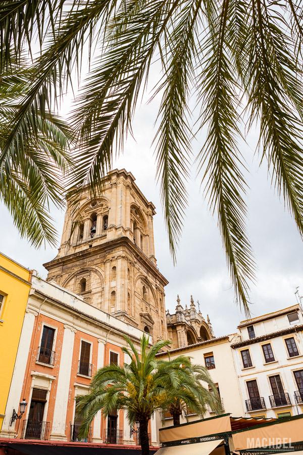 Catedral y centro de Granada