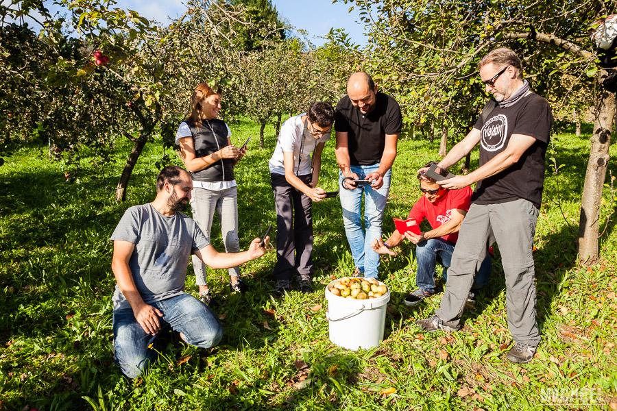Bloggers compartiendo la experiencia de recoger manzanas en Gijón para hacer sidra