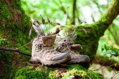Botas de peregrino del Camino