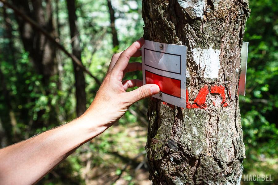 Señalización en árboles no sostenible