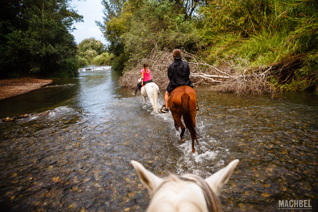 Paseando a caballo por el río Guadalfeo