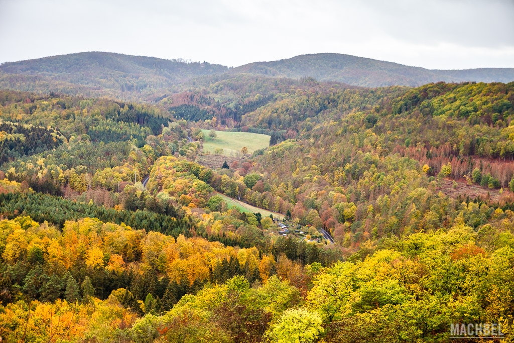 Bosques que rodean el Castillo de Wartburg
