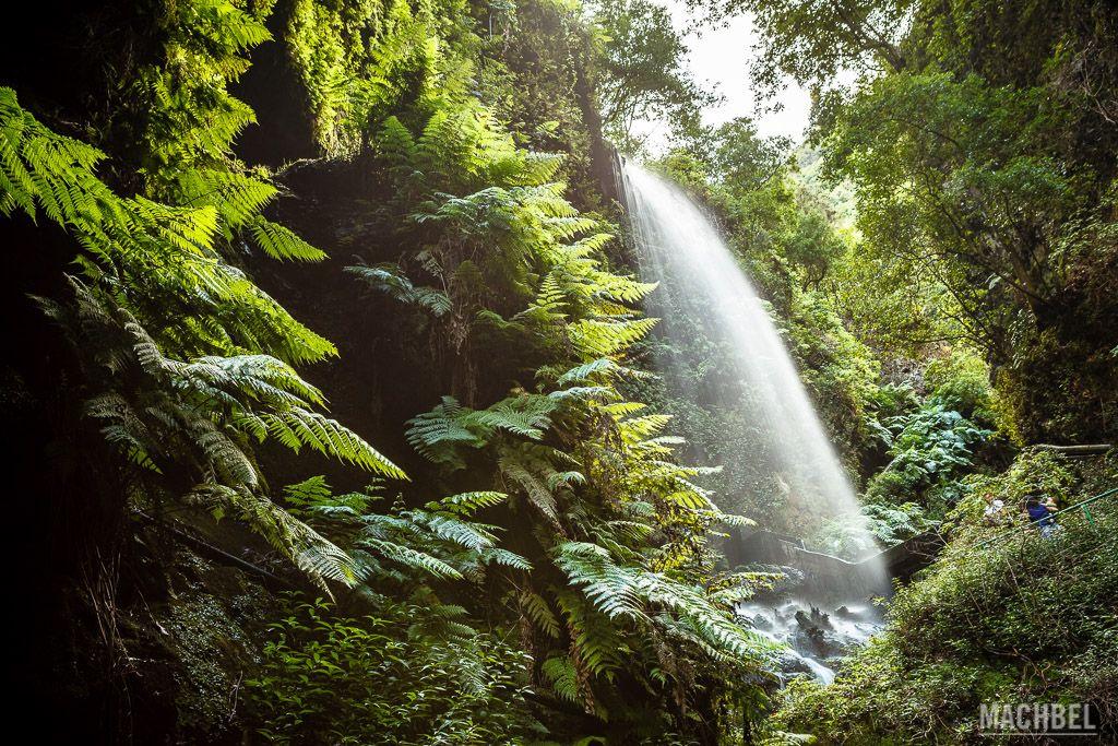 Cascada en el corazón de La Palma