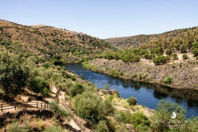 Río Tajo - Tejo a su paso por Alcántara