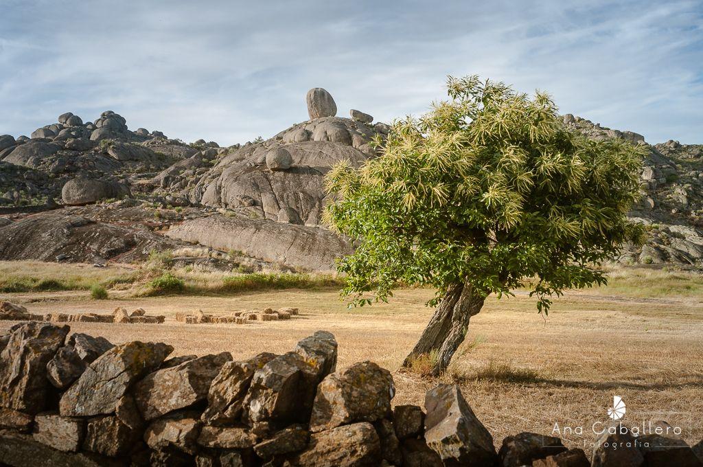 Batolito Granítico de la Sierra de Jola