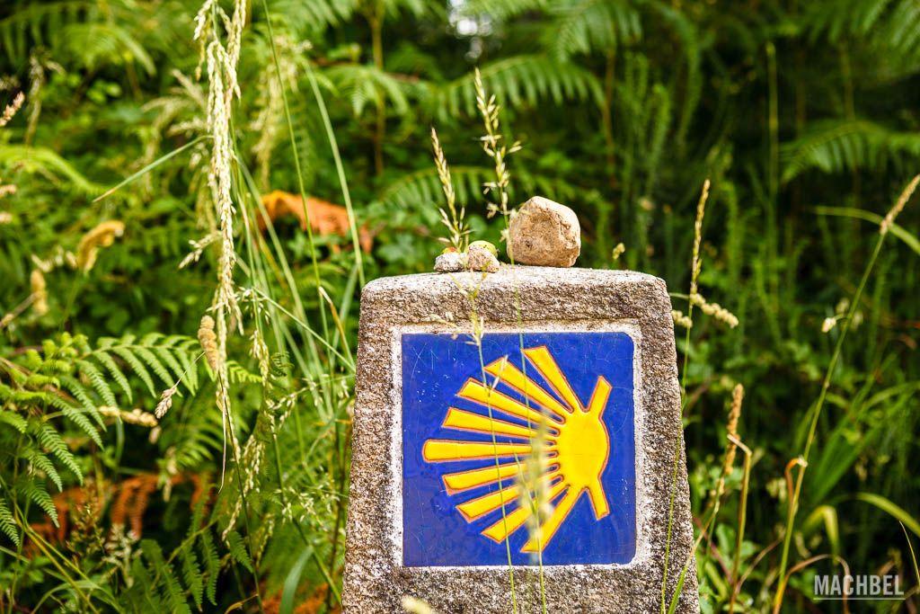 Consejos Para Hacer El Camino De Santiago Más Sostenible Machbel
