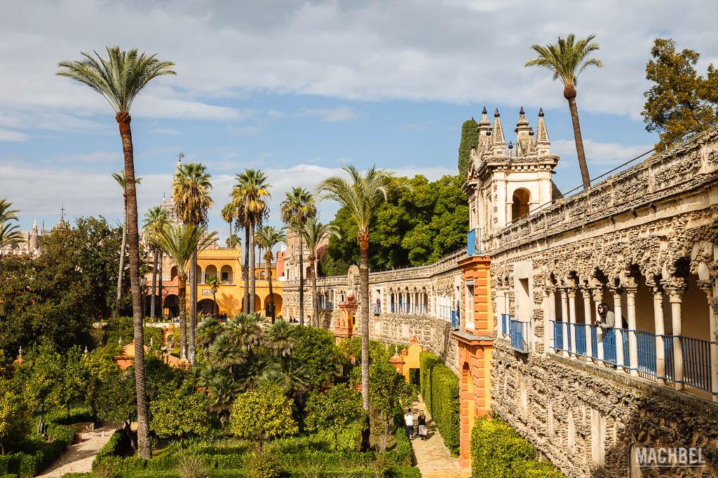 Jardines en Real Alcázar