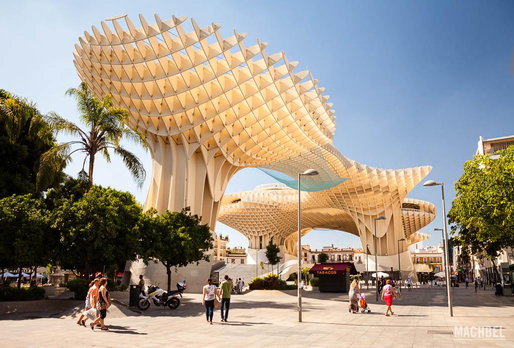 Setas de Sevilla desde el suelo