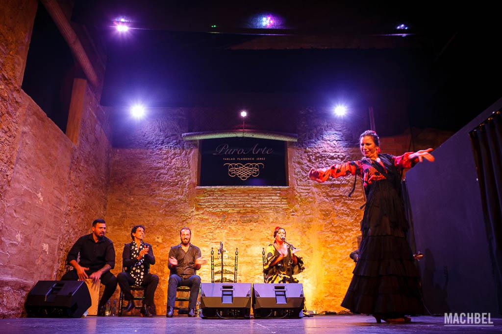 Baile flamenco en Puro Arte, Jerez de la Frontera