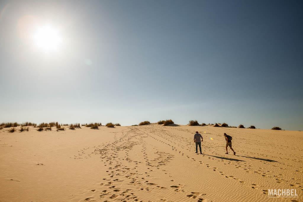 Dunas del Parque Nacional de Doñana