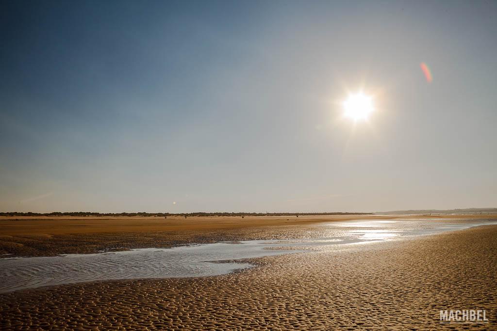 Playa del Parque Nacional de Doñana