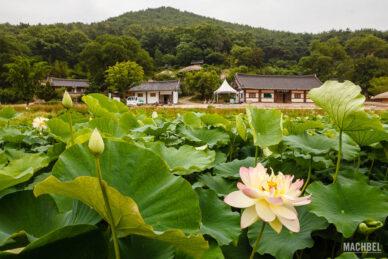 Pueblo histórico de Yangdong